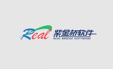 大庆紫金桥软件技术有限公司