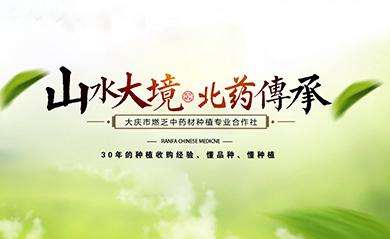 大庆市燃乏中药材种植专业合作社